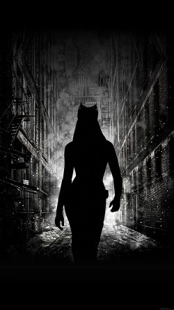 papers.co-ab23-wallpaper-catwoman-walking-dark-33-iphone6-wallpaper