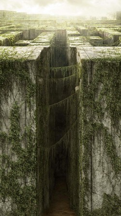 papers.co-ad35-the-maze-runner-poster-33-iphone6-wallpaper