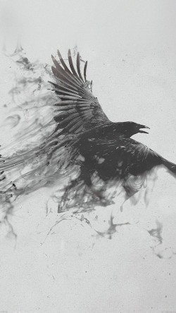 papers.co-af09-black-bird-smoke-art-illust-33-iphone6-wallpaper