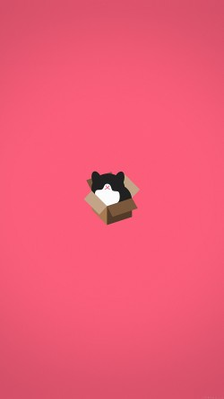 papers.co-aj73-cat-box-red-illust-animal-art-minimal-33-iphone6-wallpaper