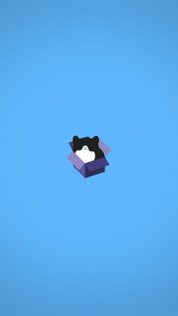papers.co-aj74-cat-box-blue-illust-animal-art-minimal-33-iphone6-wallpaper