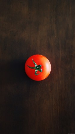 papers.co-ak68-one-tomato-food-nature-33-iphone6-wallpaper