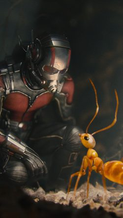 papers.co-as17-marvel-antman-metts-ant-film-art-illustration-33-iphone6-wallpaper