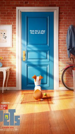 papers.co-as47-pets-animation-cute-film-art-illustration-33-iphone6-wallpaper