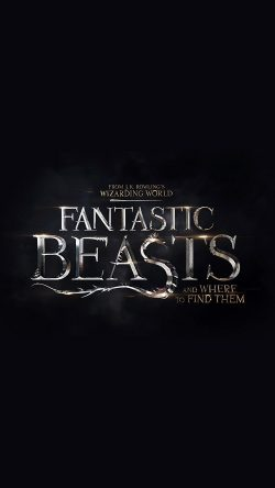papers.co-au97-title-dark-fantastic-beasts-and-where-to-find-them-film-illustration-art-33-iphone6-wallpaper
