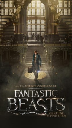 papers.co-av07-fantastic-beasts-and-where-to-find-them-film-illustration-art-poster-33-iphone6-wallpaper