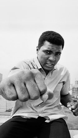 papers.co-hj05-muhammad-ali-boxing-legend-sports-bw-33-iphone6-wallpaper