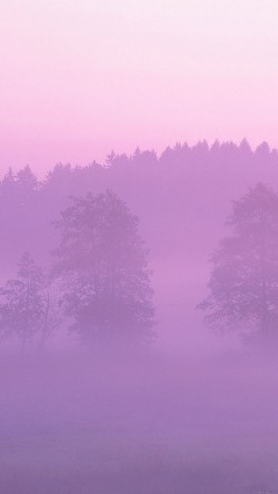 papers.co-ma37-misty-pink-forest-mountain-nature-33-iphone6-wallpaper