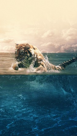 papers.co-ma95-tiger-running-blue-sea-nature-33-iphone6-wallpaper