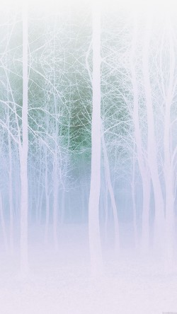 papers.co-mb15-wallpaper-foggy-forest-white-33-iphone6-wallpaper