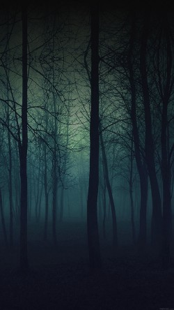 papers.co-mb33-wallpaper-foggy-forest-mountain-33-iphone6-wallpaper