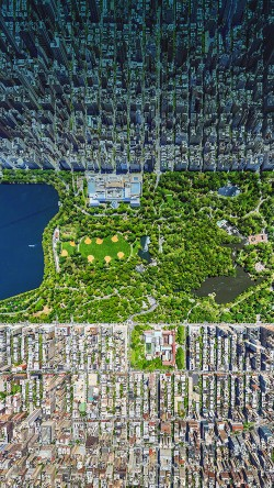 papers.co-mb92-wallpaper-central-park-newyork-33-iphone6-wallpaper