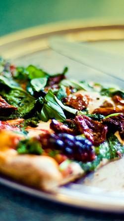 Oven Brick Pizza