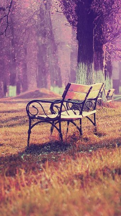 papers.co-md16-wallpaper-fall-blue-park-chair-lonely-nature-33-iphone6-wallpaper