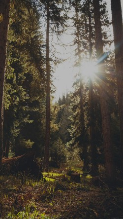 papers.co-mi94-mountain-sunlight-dark-marco-jorger-nature-33-iphone6-wallpaper