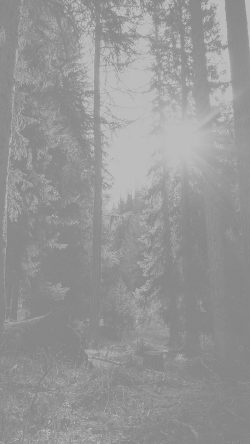 papers.co-mi96-mountain-sunlight-white-marco-jorger-nature-33-iphone6-wallpaper