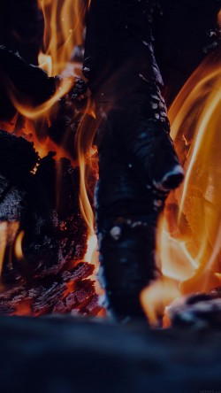 papers.co-mj04-fire-camp-dark-thomas-lefebvre-nature-33-iphone6-wallpaper