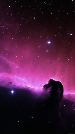 papers.co-mj09-horse-head-nebula-space-stars-33-iphone6-wallpaper