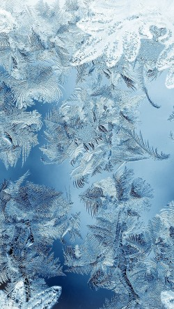 papers.co-mj59-ice-pattern-blue-snow-nauture-christmas-33-iphone6-wallpaper