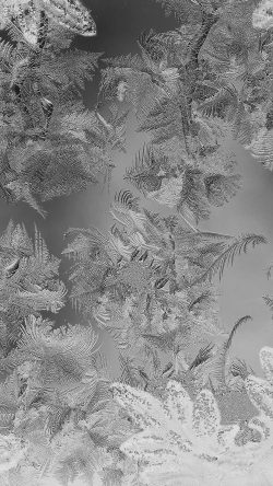 papers.co-mj61-ice-pattern-black-snow-nauture-christmas-33-iphone6-wallpaper