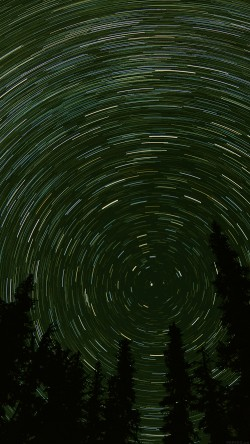 papers.co-mj73-star-trail-green-tree-space-night-nature-33-iphone6-wallpaper