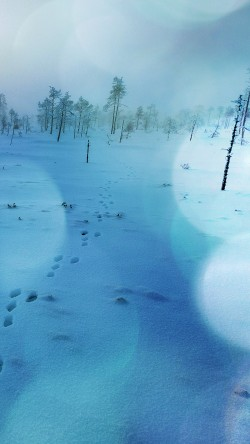 papers.co-mm52-snow-walk-winter-blue-bokeh-footprints-nature-mountain-33-iphone6-wallpaper