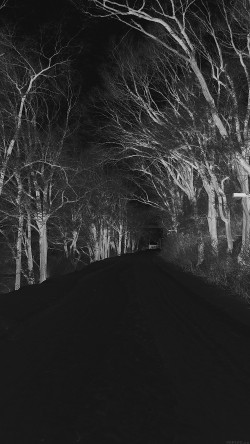 papers.co-mp51-winter-scary-road-nature-mountain-dark-33-iphone6-wallpaper