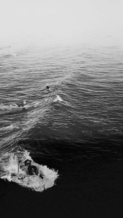 papers.co-ms61-surfing-wave-summer-sea-ocean-dark-bw-33-iphone6-wallpaper