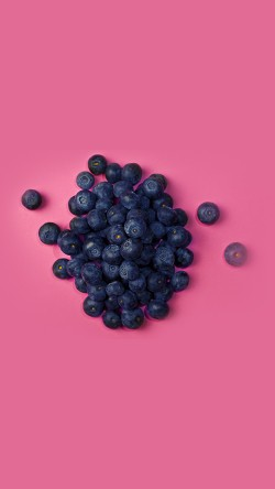 papers.co-mt54-food-blueberry-pink-art-nature-33-iphone6-wallpaper