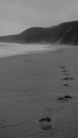 papers.co-mw84-naked-walk-sea-beach-nature-pure-dark-bw-33-iphone6-wallpaper