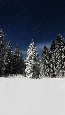 papers.co-mz23-snow-winter-wood-mountain-sky-star-night-33-iphone6-wallpaper