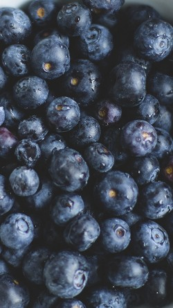 papers.co-na76-blue-berry-healthy-fruit-eat-food-nature-33-iphone6-wallpaper
