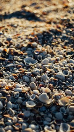 papers.co-nd12-beach-sand-rock-nature-pattern-33-iphone6-wallpaper