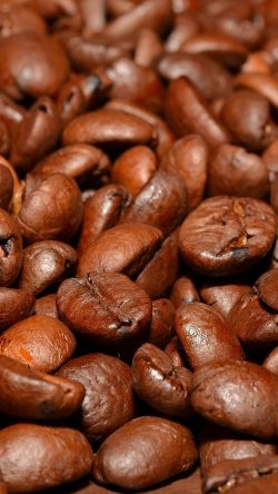 papers.co-nd53-coffee-bean-roasted-aroma-33-iphone6-wallpaper