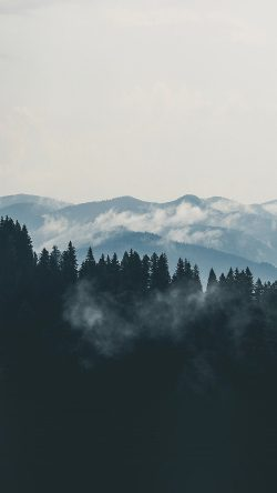 papers.co-nd57-mountain-fog-nature-view-wood-forest-33-iphone6-wallpaper