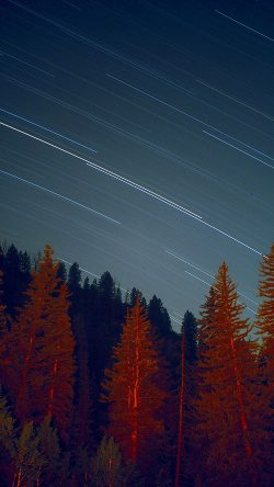 papers.co-ng80-night-wood-mountain-star-sky-nature-33-iphone6-wallpaper