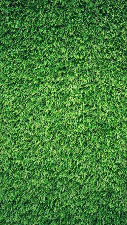 papers.co-nj44-grass-green-pattern-nature-33-iphone6-wallpaper