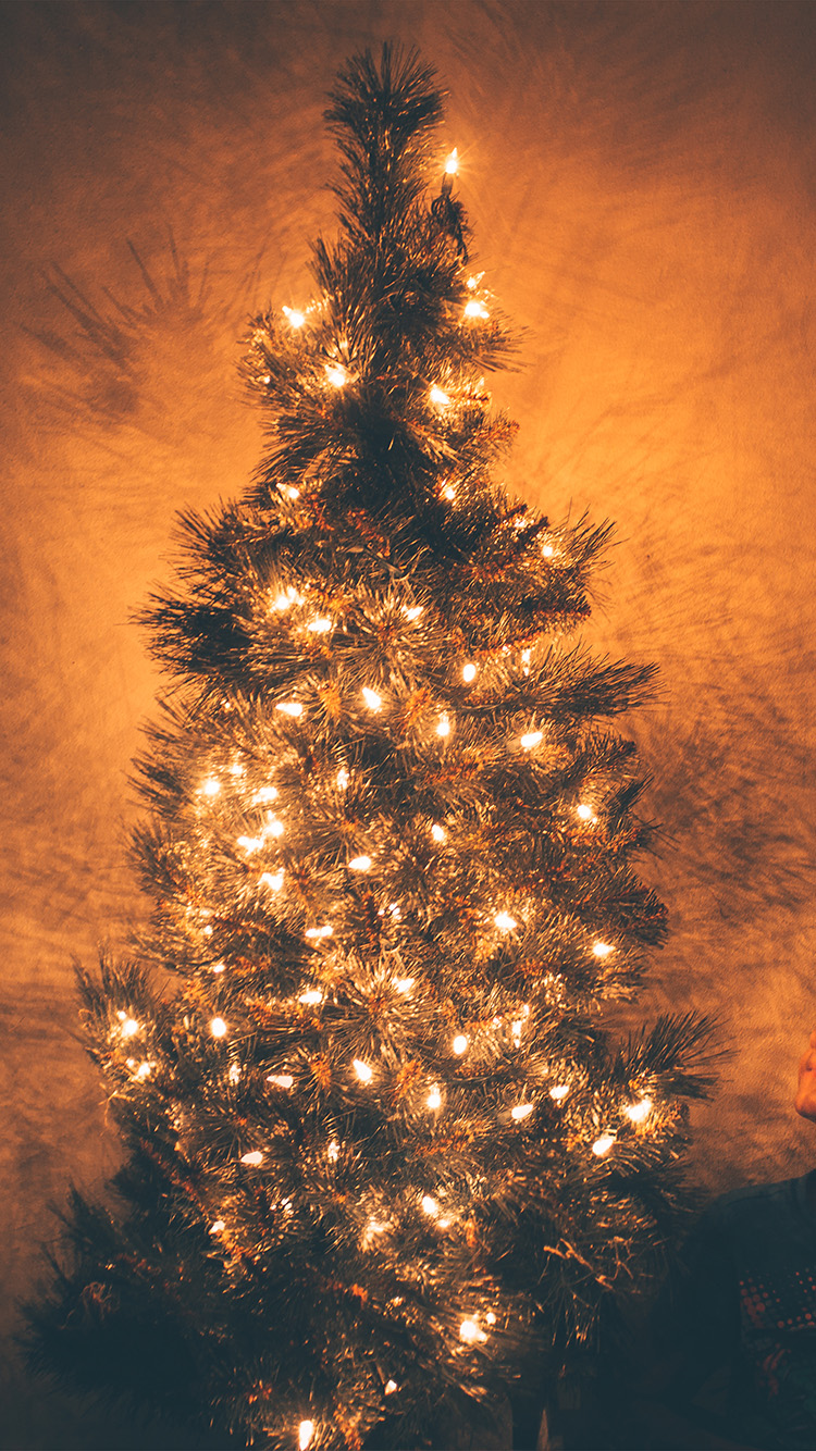 Iphone6papers Com Iphone 6 Wallpaper Nv79 Christmas Tree Light