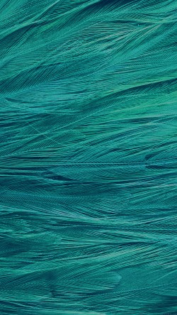 papers.co-vf29-feather-blue-bird-pattern-33-iphone6-wallpaper