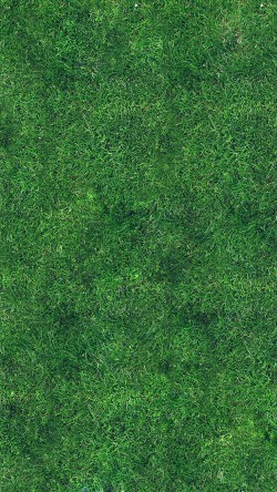 papers.co-vg56-grass-texture-nature-pattern-33-iphone6-wallpaper