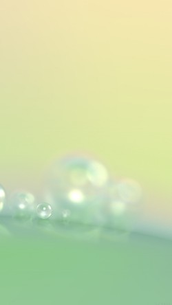 papers.co-vg72-rain-morning-dew-drop-blur-pattern-33-iphone6-wallpaper