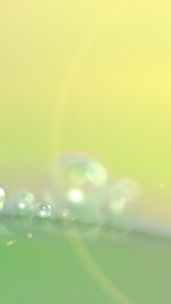papers.co-vg73-rain-morning-dew-drop-green-blur-pattern-33-iphone6-wallpaper