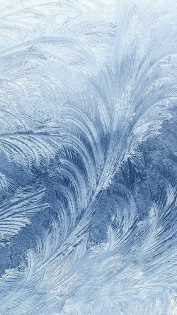 papers.co-vi81-winter-snow-window-cold-pattern-33-iphone6-wallpaper