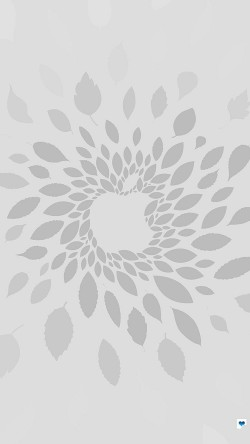 papers.co-vj78-apple-store-leafs-art-pattern-bw-33-iphone6-wallpaper