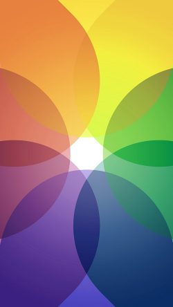 papers.co-vk32-rainbow-color-variation-circle-pattern-33-iphone6-wallpaper