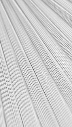 papers.co-vn32-leaf-white-surface-texture-nature-pattern-bw-33-iphone6-wallpaper