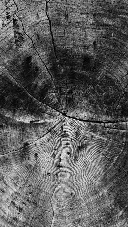 papers.co-vq73-wood-line-texture-old-dark-pattern-bw-33-iphone6-wallpaper