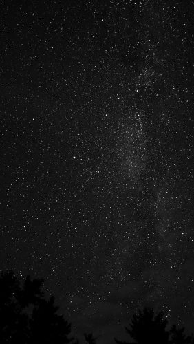 na99-night-sky-milkyway-tree-wood-nature-bw-dark